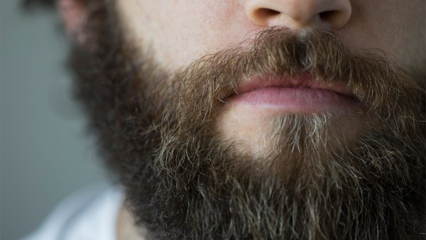 Are beards the key to future antibiotics?