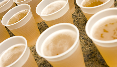 Booze University: 6 Cool College Classes About Alcohol