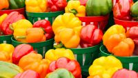 The Difference Between Green, Yellow, and Red Bell Peppers