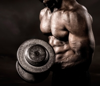 Lift! Lift! Lift! Don't Rely on Cardio