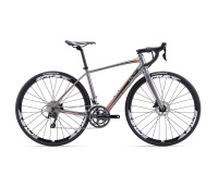 Liv Avail SL 1 Disc Bike