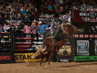 Bonner Bolton Rides a Bull Professional Bull Riders