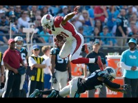 Watch: David Johnson Jumps Out of a Pool, Proves He's Crushing His Injury Rehab