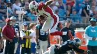 David Johnson's Strength, Speed, and Agility Football Workout