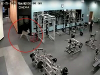 Deer breaks into Golds Gym in Anderson, South Carolina for quick workout