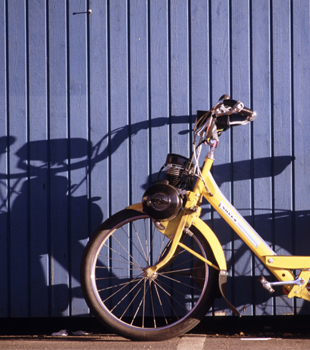 Why You Need an Electric Bike