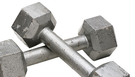 The Fit 5: Building a Weight Training Routine