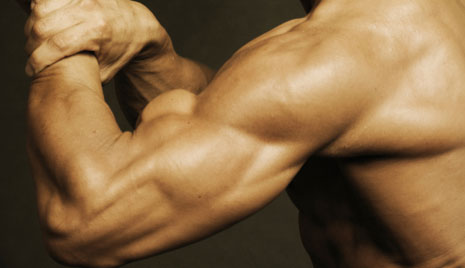 Your Workouts Reviewed: Strength and Conditioning Routine