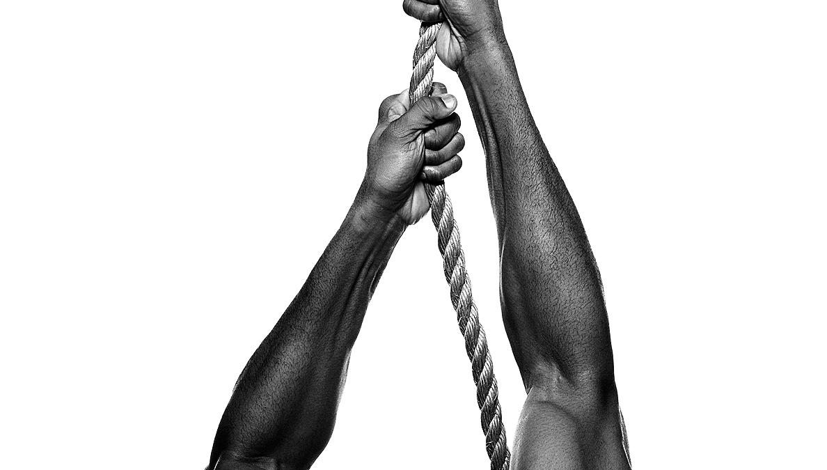 Develop the Best Forearms in the Gym