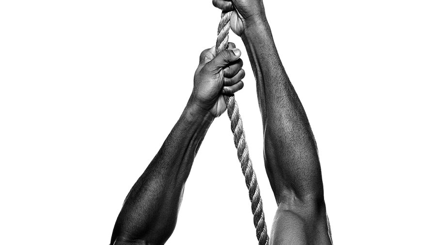 10 Exercises to Develop the Best Forearms in the Gym
