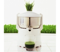 The Guy's Guide to Green Juice