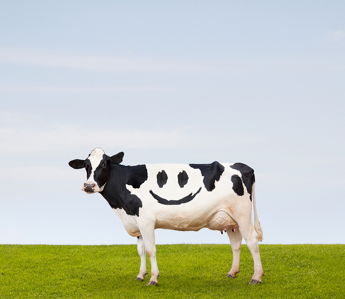 Happy Animals Make for Tastier Meat—or at Least We Like to Think They Do