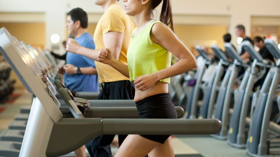 Join a College Gym, Get Better Grades