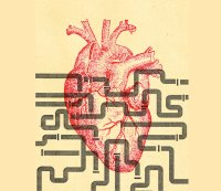 Nine Ways Your Gut Can Protect Your Heart