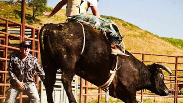 Scott Eastwood Actually Rode A Bull