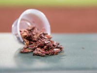 Seattle Mariners, grasshoppers