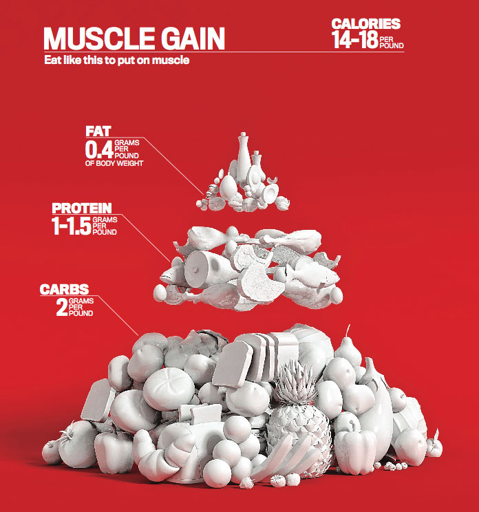 Diet guidelines to build muscle