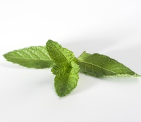 3. Follow meals with mint