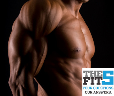 The Fit 5: Muscle Definition