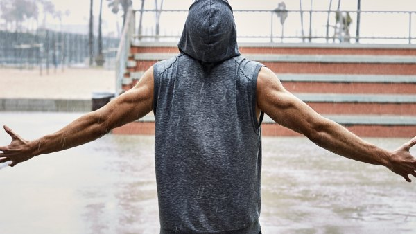 The back and biceps workout
