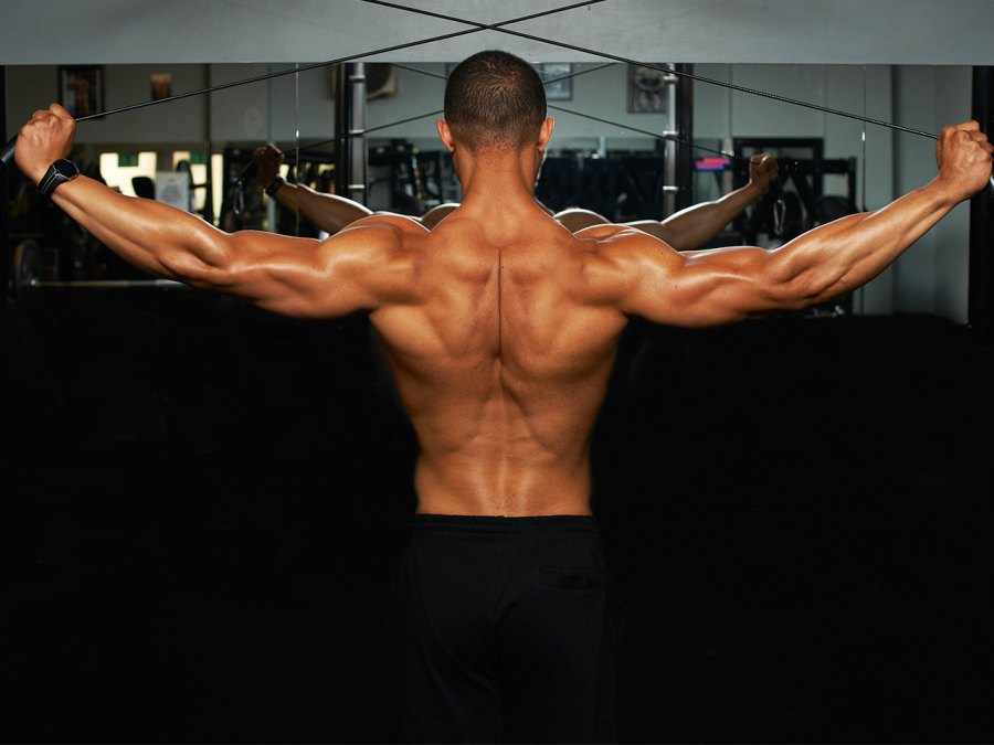Best Back Exercises of All Time