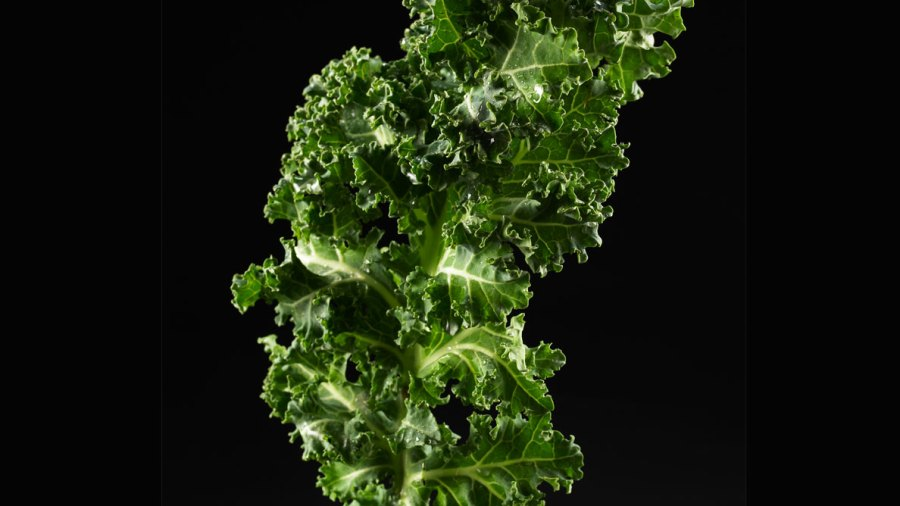 Party On, It's National Kale Day