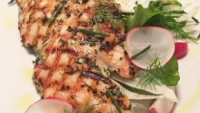 Recipe: Mixed Greens with Herbed Grilled Chicken