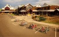 New Belgium Brewery, Fort Collins, CO