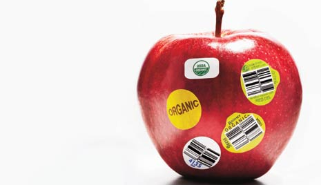 Going Organic: What You Need to Know
