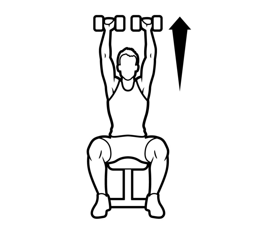 SEATED OVERHEAD PRESS/BODYSAW