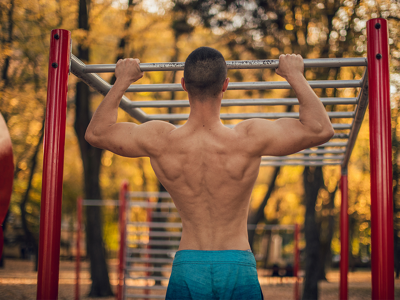 How to build muscle on the bar 55