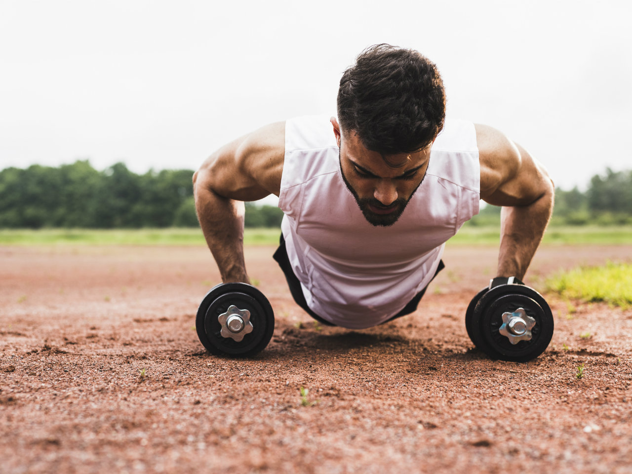 The 30 Minute Dumbbell Workout Program To Build Muscle