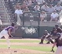Randy Johnson hits a bird with a fastball.