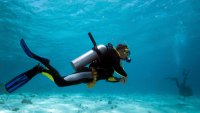 What it Takes to Become a Certified Scuba Diver