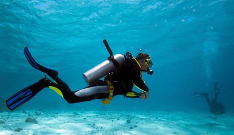 Make Scuba Diving Your New Workout