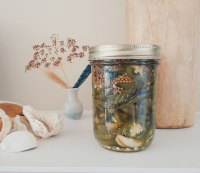 Quick-pickled Jalapeno Slices