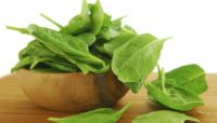 Fit Food: the Benefits of Spinach