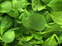 Muscle magnifier: spinach