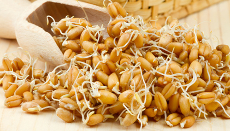 Should You Be Eating Sprouted Grains?