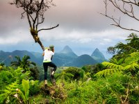 Summit of Mt. Gimie in St. Lucia