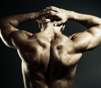 The Two-Move Shoulder Workout