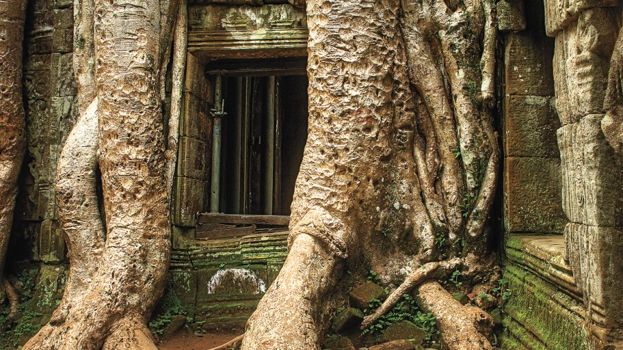 Here's Why You Should Book a Trip to Cambodia