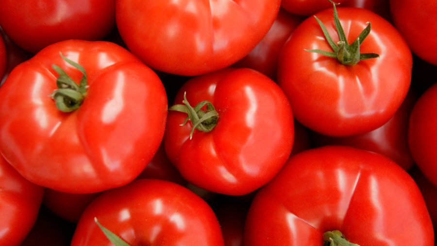 Scientists Have Figured Out How to Fix the Tasteless Supermarket Tomato