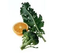 4 Things You Need to Juice