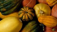 Fit Food: Winter Squash
