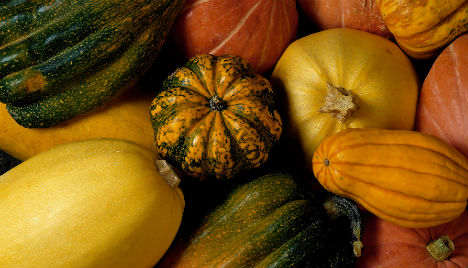 Fit Food: the Benefits of Winter Squash