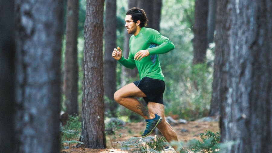 Hit the Woods for a Healthier Workout