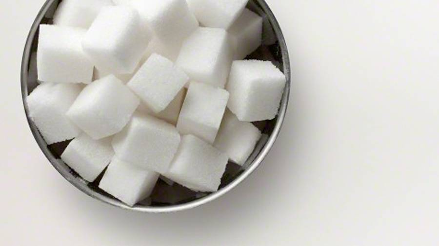 Your Workout Fuel: the Truth About Sugars and Endurance