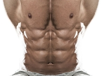 mj-390_294_10-myths-about-six-pack-abs