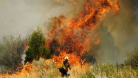 mj-390_294_10-of-the-most-devastating-fires-in-u-s-history